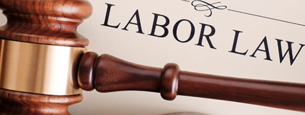labor and employment law stan stern